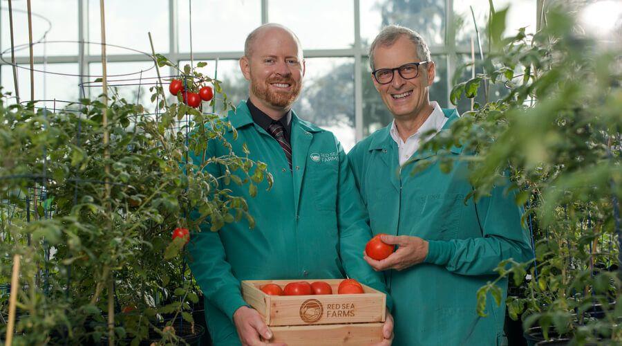شركة مزارع البحر الأحمر تجمع استثمار بقيمة  10 مليون دولار