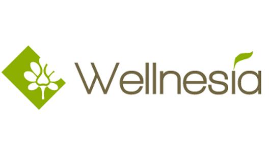 Wellnesia to Indulge Dubai with New Spa and Beauty Hub