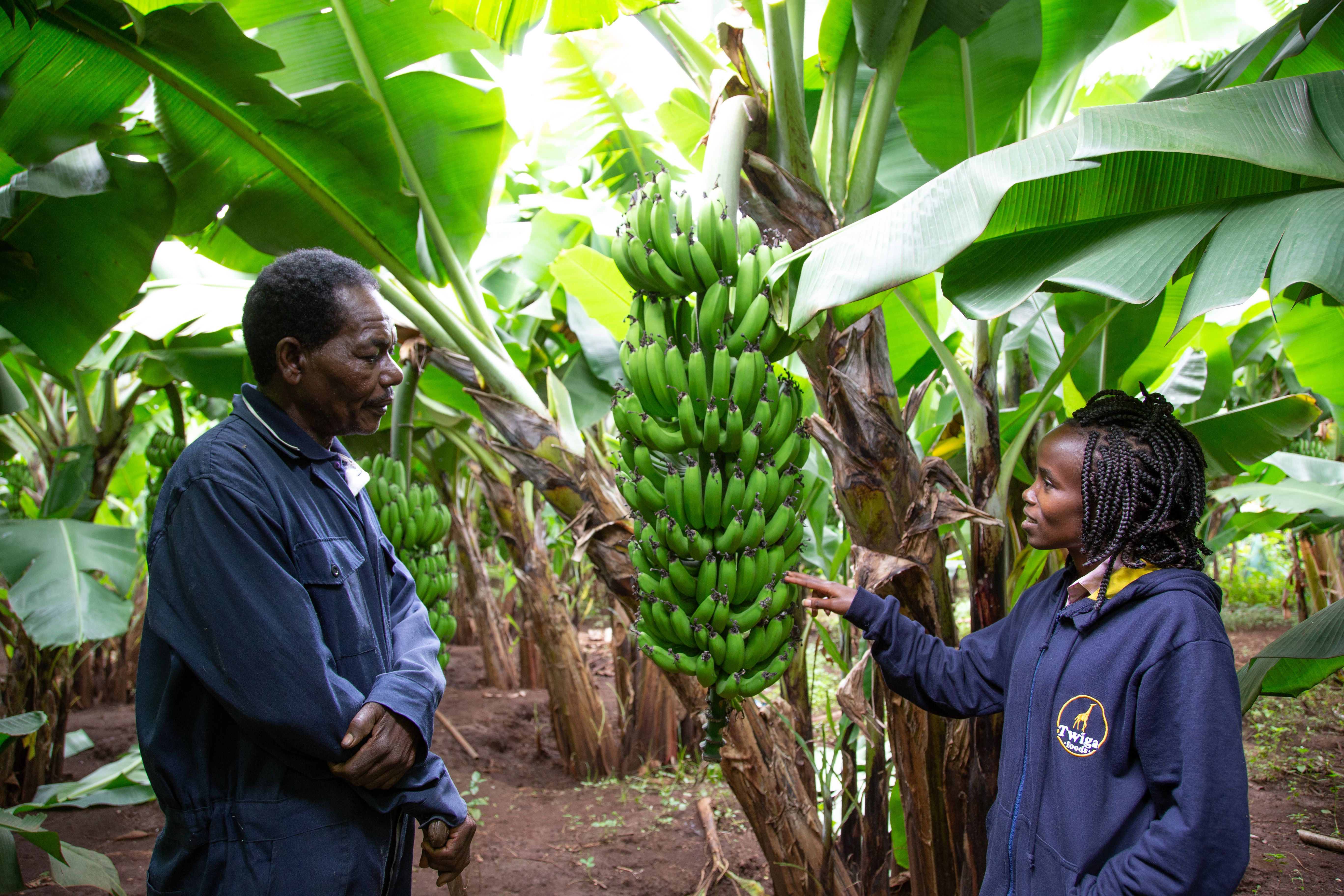 Wamda invests in Twiga Foods Series B