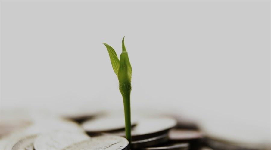 الاستثمار في الشركات الناشئة: تطور البيئة الحاضنة في المنطقة العربية في العام 2016 [تقرير]