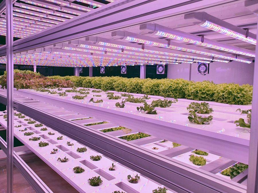 KRISPR raises $600,000 pre-seed