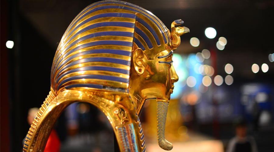 Startup Watch: Message from the Pharaohs, zombie startups, and indoor farming
