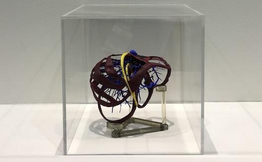 ما الذي يجمع الأطباء بالطباعة ثلاثية الأبعاد؟