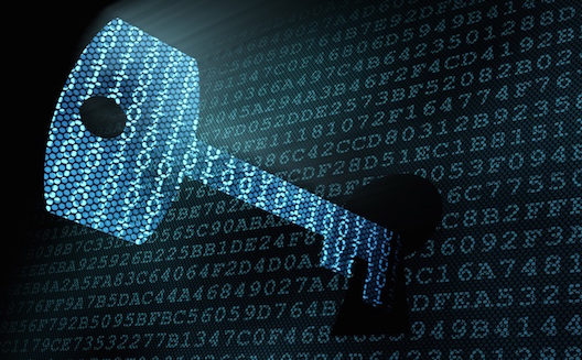 Can the internet revolution break down the barriers of data secrecy in the Middle East? [Opinion]