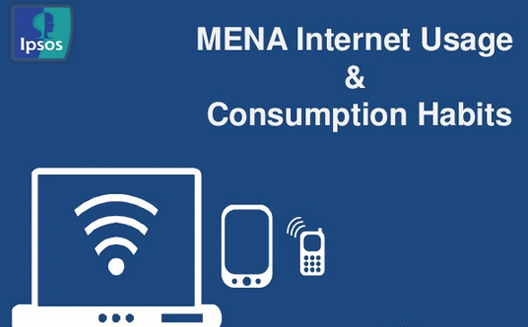 13 Quick Stats about Internet Usage in the Middle East [Stats]