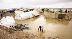 Syrians seek refuge in tech