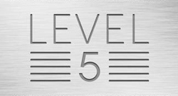 The Launch Of Level 5