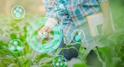 Agri-logistics wins Lebanon's first agritech hackathon
