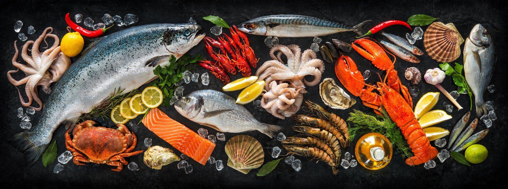Fish.qa القطرية تغلق جولة تمويلها البذرية بقيادة 360nautica