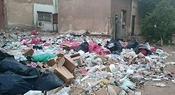 Startups urged to use Egypt's wealth of waste