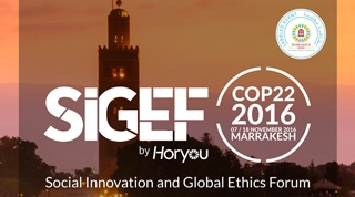 SIGEF 2016 [Exclusive discount!]
