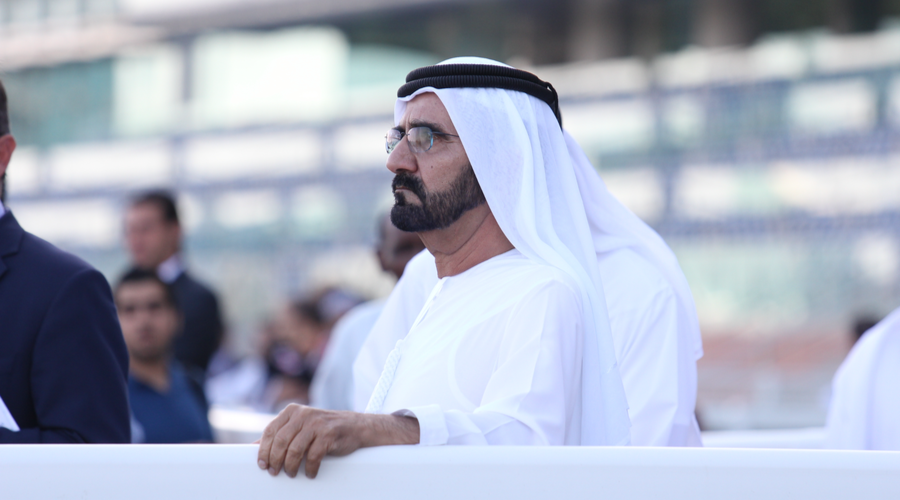 UAE launches national programme for coders