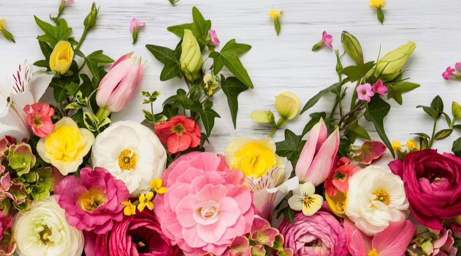هل يبدو مستقبل أسواق الزهور وردياً؟