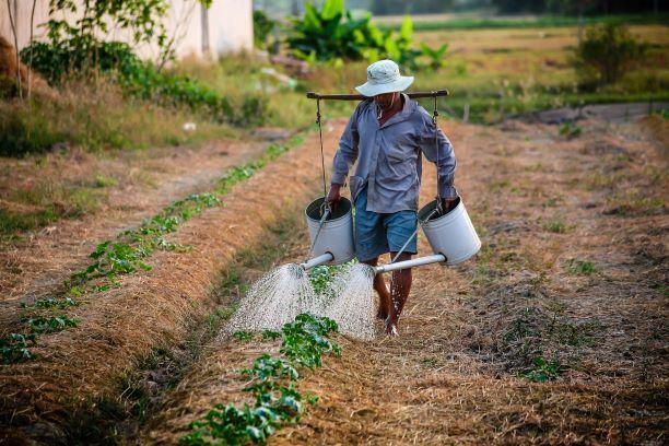 Jordan's Ghoorcom looks to boost farmers' profits through technology