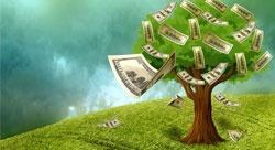 شرح قانوني لجولة التمويل التأسيسية