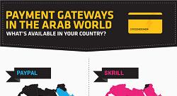 بوابات الدفع في المنطقة العربية عام 2013 [إنفوجرافيك]