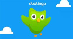 هل يصبح تعلّم اللغات أسهل مع انطلاق 'ديولنجو' في المنطقة العربية؟